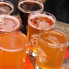 Small-Group Portland Beer-Tasting Tour