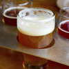 Sonoma Brewery Tour and Lunch