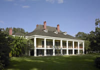 Swamp Boat Ride and Southern Plantation Tour from New Orleans Photos