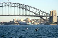 Sydney Harbour Kayak Tours Photos