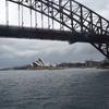 Sydney Harbour Catamaran Cruise
