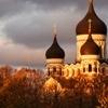 Tallinn Shore Excursion: Tallinn Art Tour: Kadriorg Park and Kumu