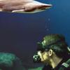 Tampa Trio Pass: Florida Aquarium, Tampa's Lowry Park Zoo and MOSI