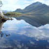 Tasmania Wilderness Experience: Southwest National Park by Air with Bush Walk and Harbor Cruise