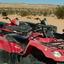 The ATVs Lined Up - Las Vegas