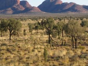 2-Day Uluru Sunset and Kata Tjuta Tour from Ayers Rock Photos