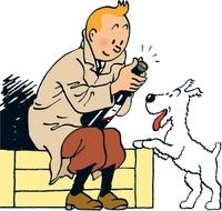 Tintin Comics Tour to Hergé Museum from Brussels Photos