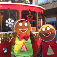 Vancouver Holiday Lights and Karaoke Trolley Tour Photos