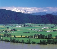 Vancouver Shore Excursion: Fraser Valley Wine Country Day Trip from Vancouver Photos