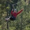 Victoria Shore Excursion: Small-Group Zipline Adventure