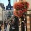 Village Of Amboise - Paris