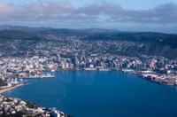 Wellington Shore Excursion: City Sightseeing Tour Photos