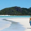 Whitehaven Beach Half-Day Cruises