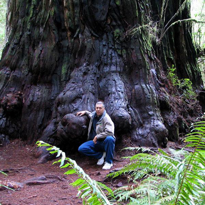 Jedediah Smith Redwoods State Park, United States Social