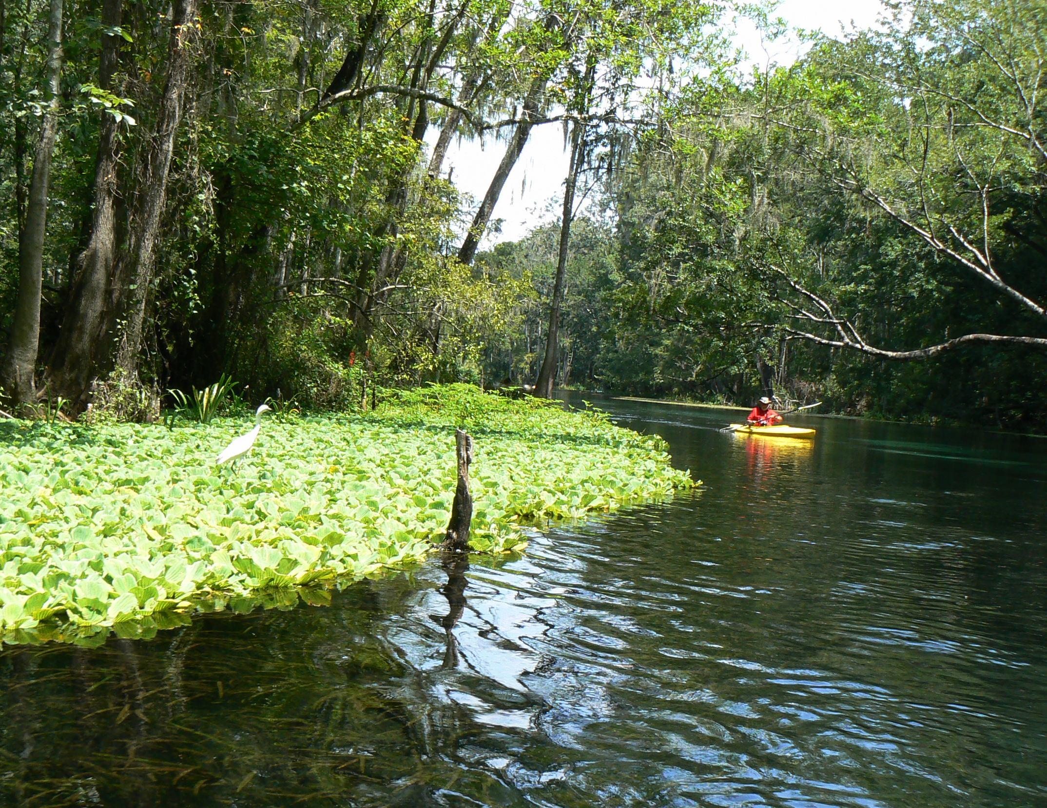 Ichetucknee River United States Tourist Information